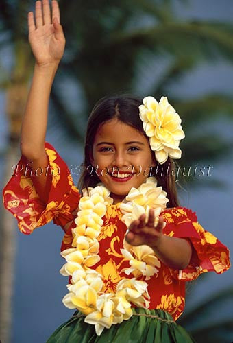 Keiki hula dancer, Maui, Hawaii Picture Photo Print