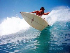 Hawaii Surfing Picture