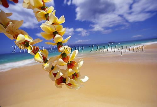 Lei and Big Beach, Oneloa, Makena, Maui, Hawaii