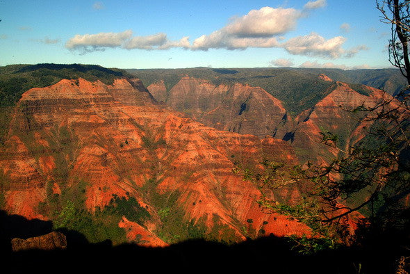 Red Rocks Waimea Canyon Kauai - Hawaiipictures.com