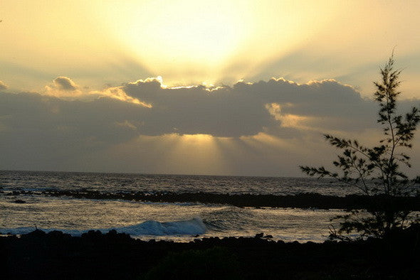 Picture Of Sunburst At Poipu