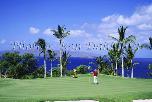 Golfers on Wailea Gold Golf course, Maui, Hawaii Picture - Hawaiipictures.com