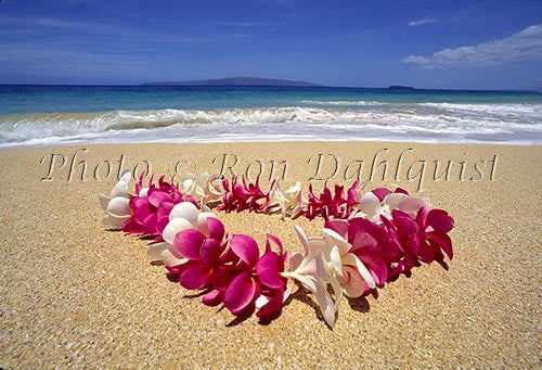 Plumeria lei on beach, Maui, Hawaii