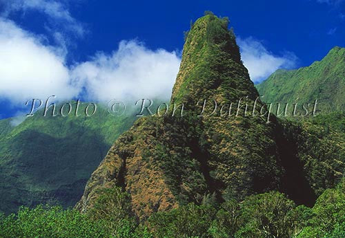Iao Needle at Iao Valley State Park, Maui, Hawaii Picture Photo - Hawaiipictures.com