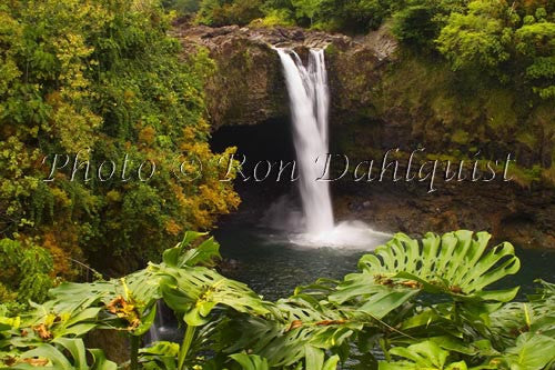 Rainbow Falls, Hilo, Big Island of Hawaii Photo