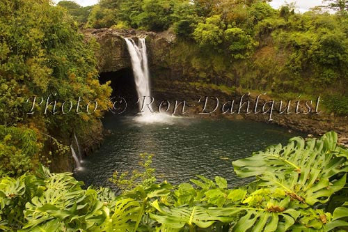 Rainbow Falls, Hilo, Big Island of Hawaii Picture