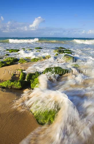 The surf rolls in at Baldwin Beach, north shore of Maui, Hawaii Picture