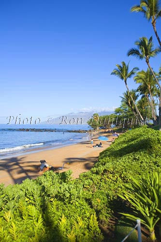 Poolenalena Beach, Makena, Maui, Hawaii Picture Photo