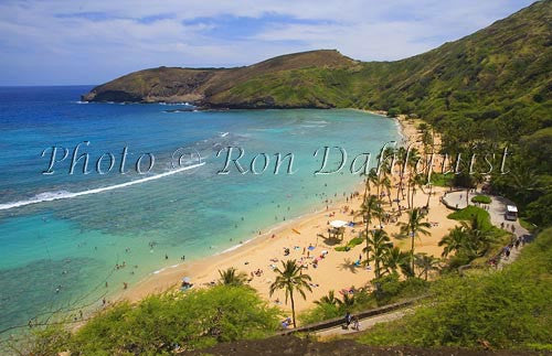 Famous snorkeling spot on Oahu, Hanauma Bay Picture