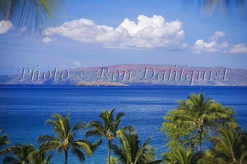 View over palm trees of Molokaini and Kahoolawe as seen from the Wailea area, Maui Picture