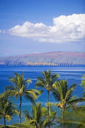 View over palm trees of Molokaini and Kahoolawe as seen from the Wailea area, Maui