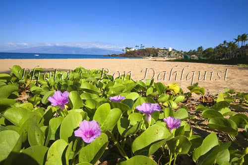 Kaanapali Beach and Black Rock, Maui, Hawaii Photo
