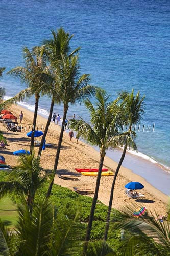 Kaanapali Beach, Maui, Hawaii Picture - Hawaiipictures.com