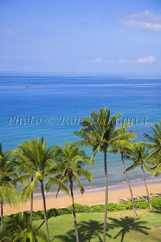 Mokapu Beach, Wailea, Maui, Hawaii Picture Stock Photo