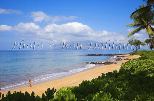 Mokapu Beach, Wailea, Maui, Hawaii Picture Photo Stock Photo