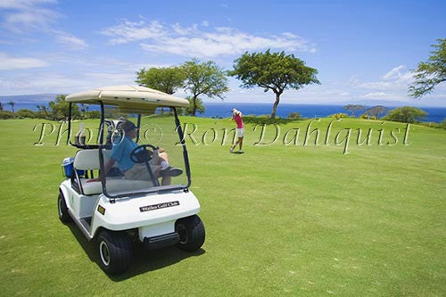 Couple playing golf at the Wailea Gold Golf Course, Wailea, Maui, Hawaii Picture