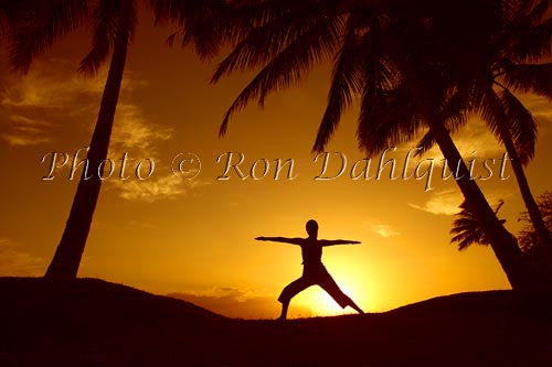 Silhouette of yoga postures at sunset with palm trees, Maui, Hawaii