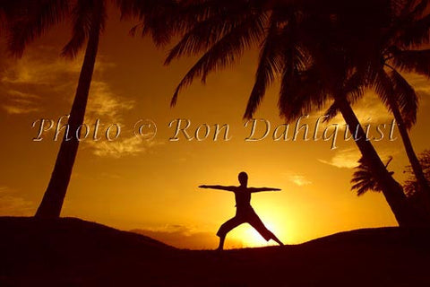 Silhouette of yoga postures at sunset with palm trees, Maui, Hawaii - Hawaiipictures.com