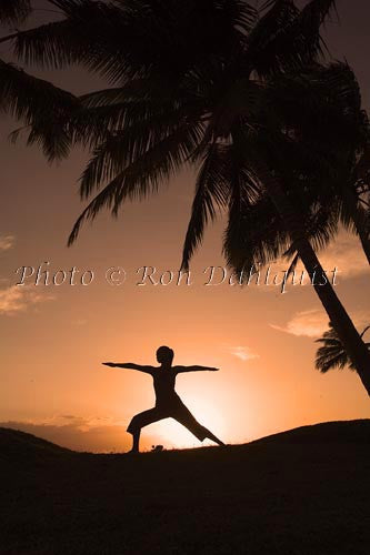 Silhouette of yoga postures at sunset with palm trees, Maui, Hawaii Picture Photo