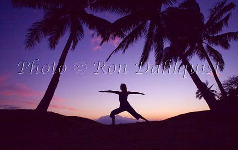 Silhouette of yoga postures at sunset with palm trees, Maui, Hawaii Picture Stock Photo - Hawaiipictures.com