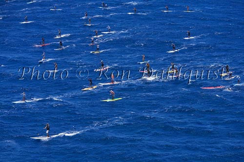 Stand-up paddle board race, Maui, Hawaii Photo