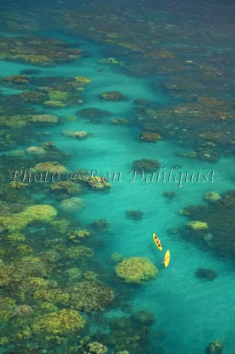 Aerial view of kayakers in the turquoise water and coral off of Olowalu, Maui, Hawaii Picture Photo - Hawaiipictures.com