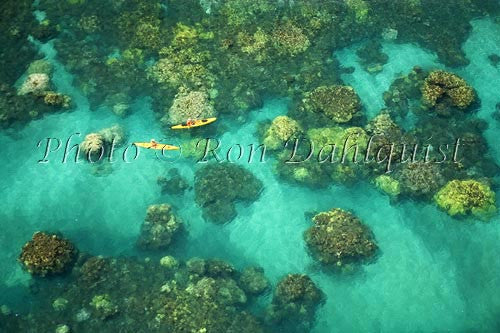 Aerial view of kayakers in the turquoise water and coral off of Olowalu, Maui, Hawaii Picture - Hawaiipictures.com