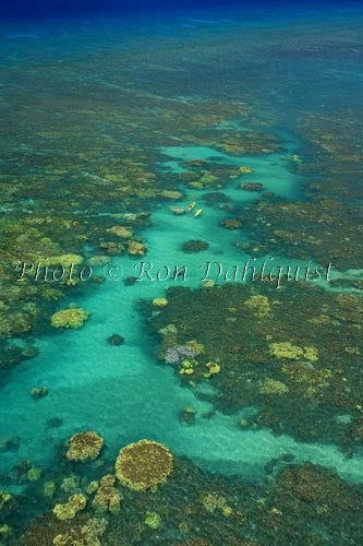 Aerial view of kayakers in the turquoise water and coral off of Olowalu, Maui, Hawaii Photo - Hawaiipictures.com