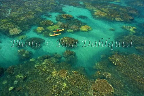 Aerial view of kayakers in the turquoise water and coral off of Olowalu, Maui, Hawaii Picture Photo Stock Photo - Hawaiipictures.com