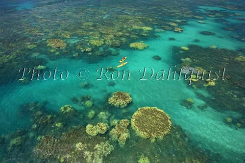 Aerial view of kayakers in the turquoise water and coral off of Olowalu, Maui, Hawaii Stock Photo - Hawaiipictures.com
