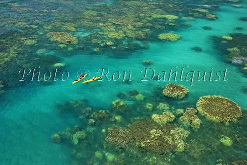 Aerial view of kayakers in the turquoise water and coral off of Olowalu, Maui, Hawaii Picture Stock Photo - Hawaiipictures.com