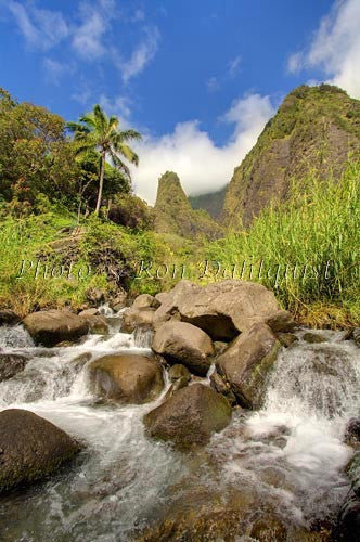 Iao Needle at Iao Valley State Park, Maui, Hawaii Picture