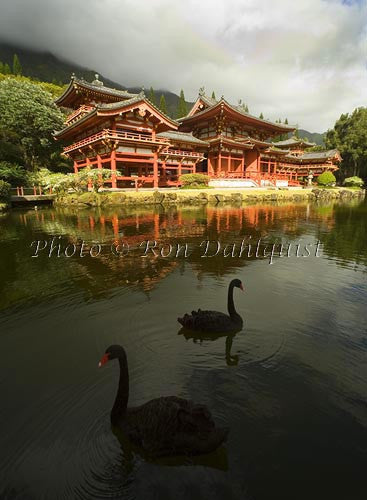 Byodo-In Temple, Valley of the Temples, Ahuimanu Valley, Kaneohe, Oahu, HI Picture Photo Stock Photo