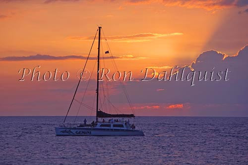 Catamarans at sunset off Kaanapali Beach, Maui, Hawaii Picture
