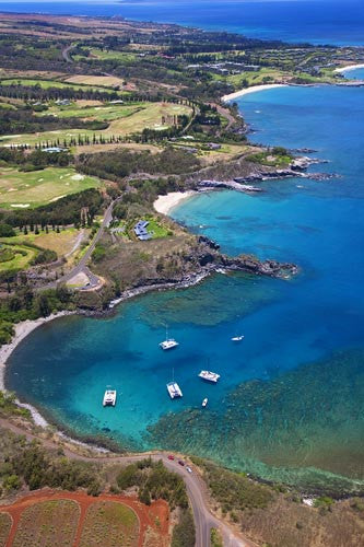 Aerial of Honolua Bay near Kapalua, Maui, Hawaii Picture - Hawaiipictures.com