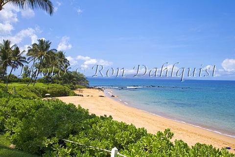 Mokapu Beach, Wailea, Maui, Hawaii Picture - Hawaiipictures.com