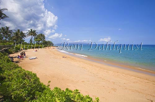 Mokapu Beach, Wailea, Maui, Hawaii Photo - Hawaiipictures.com