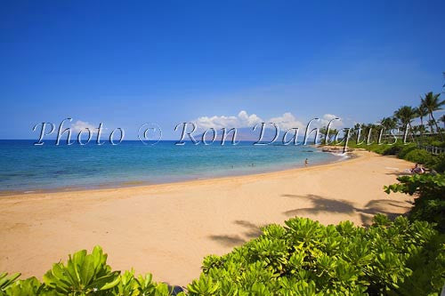 Mokapu Beach, Wailea, Maui, Hawaii Picture Photo - Hawaiipictures.com
