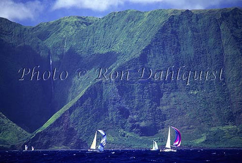 Sailboat race and cliffs on north shore of Molokai, Hawaii