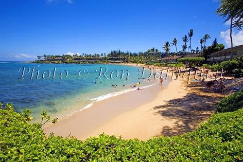 Napili Beach and Bay, Maui, Hawaii Photo - Hawaiipictures.com