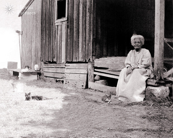 Picture Of Tutu And Her Cats