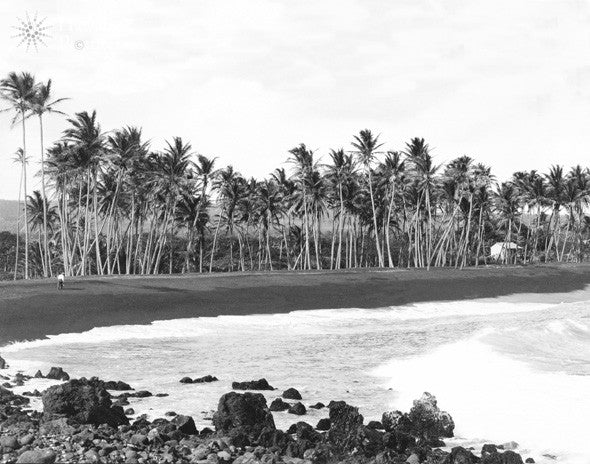 Picture Of Kaimu, Kalapana Beach