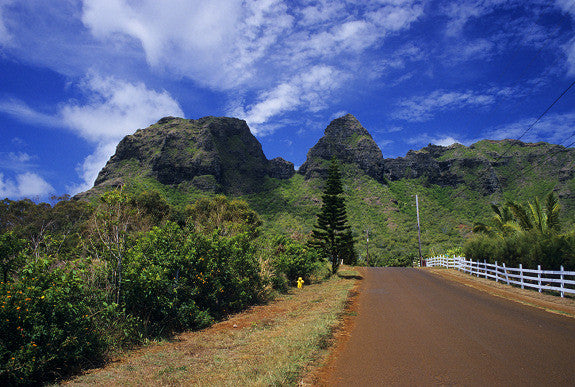 Kauai Country Road