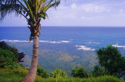 Princeville Cliffs View