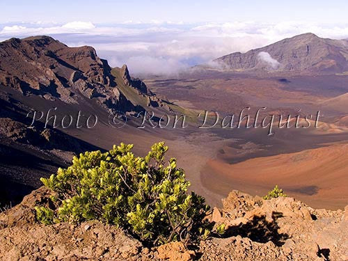 View of Haleakala Crater, Maui, Hawaii Picture