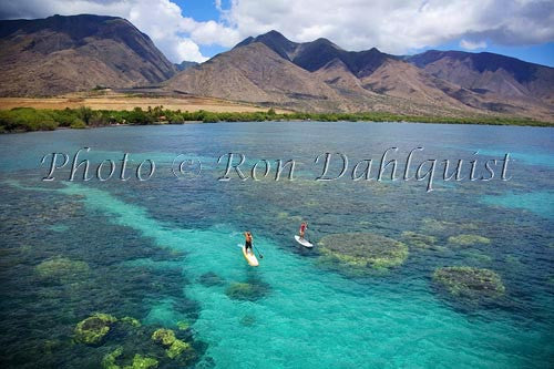 Stand-up paddle boarding on the West shore of Maui, Hawaii Picture Stock Photo Print