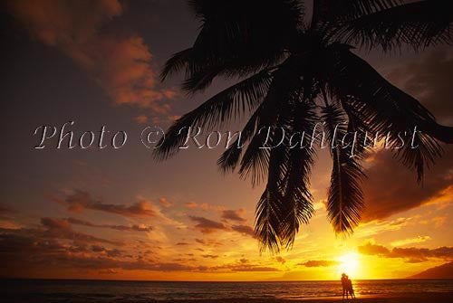 Couple at sunset with palm tree silhouette, Maui, Hawaii