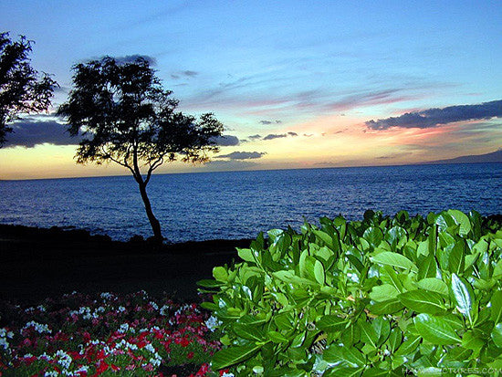 Maui Sunset Picture - Hawaiipictures.com