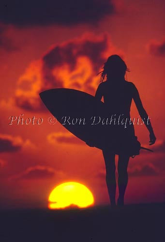 Silhouette of surfer girl at sunset, Maui, Hawaii