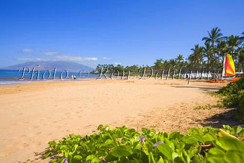 Wailea Beach, Maui, Hawaii Picture - Hawaiipictures.com